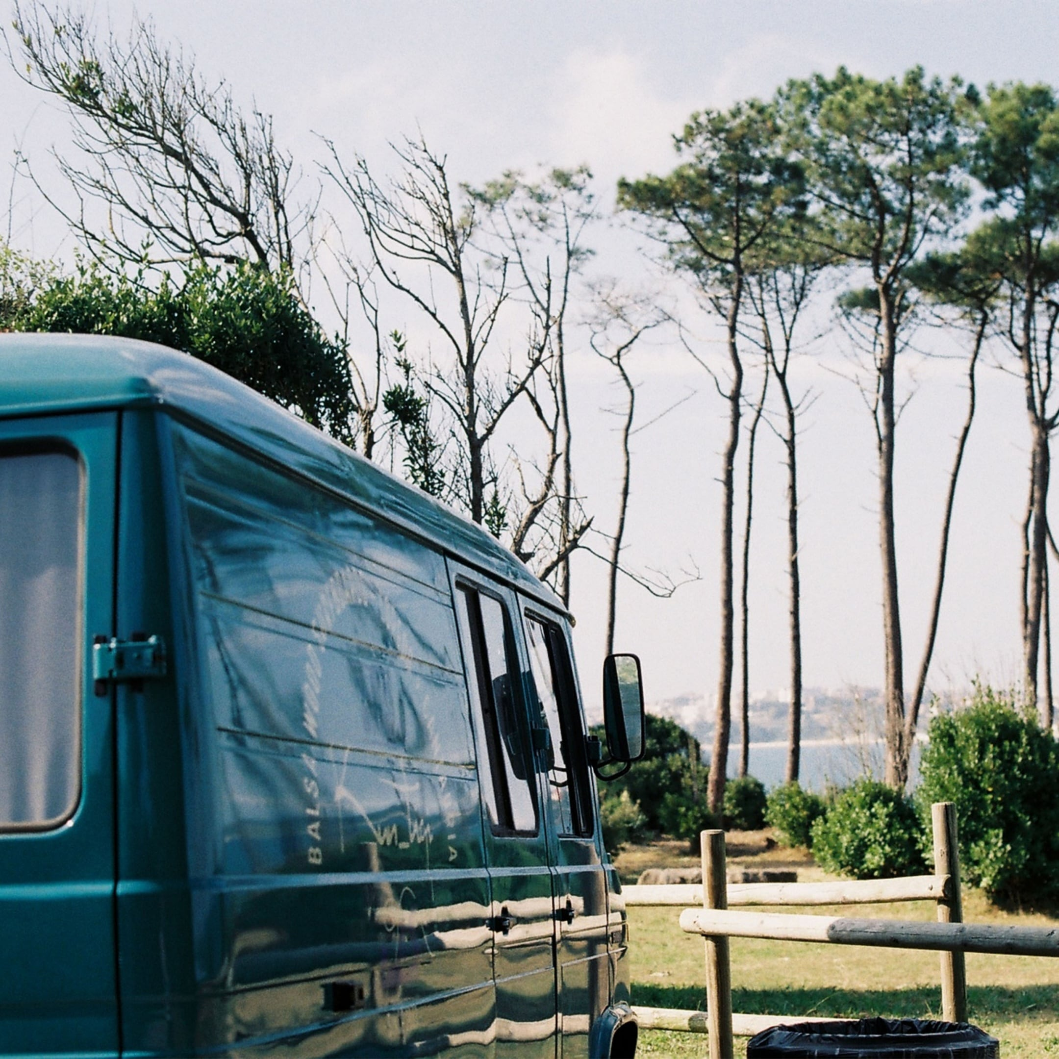 The 508 D parked in front of a backdrop of pine trees with the sea behind them