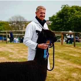 A man in a white coat holds an alpaca and a rosette