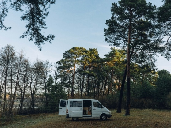 Julia Nimke's Sprinter parked in a clearing