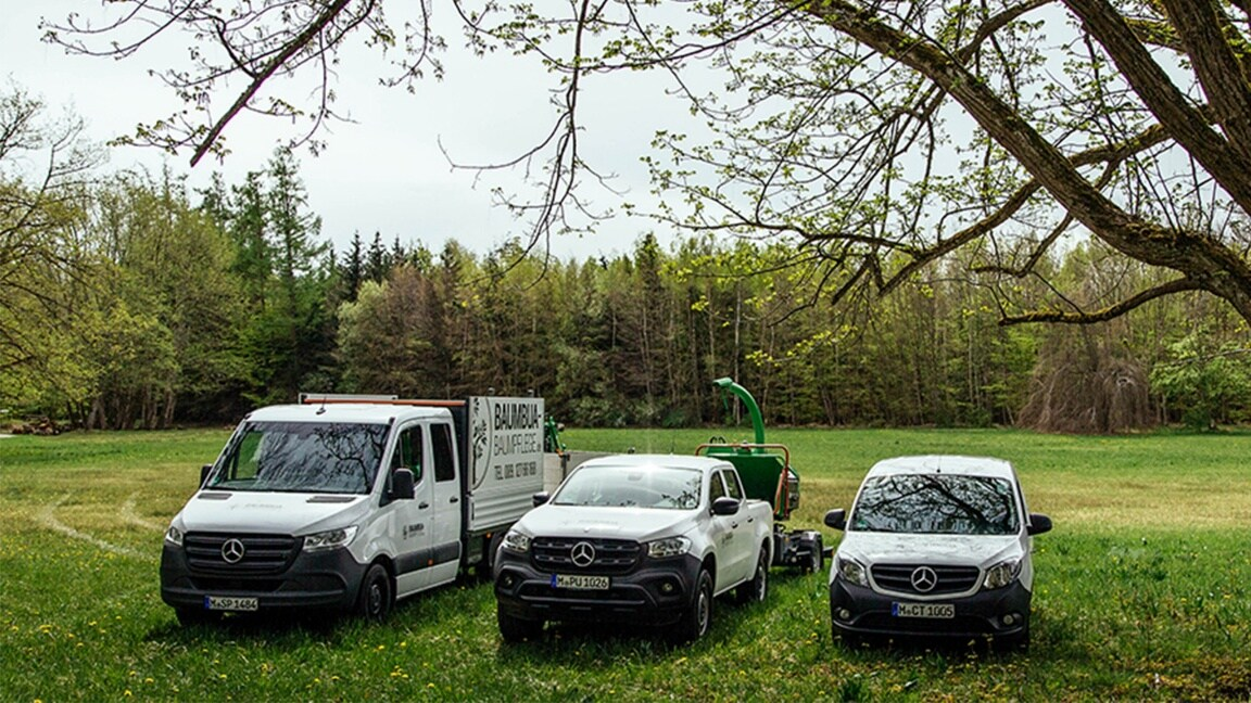 Mercedes-Benz Sprinter, X-Class and Citan vehicles parked next to one another on a field